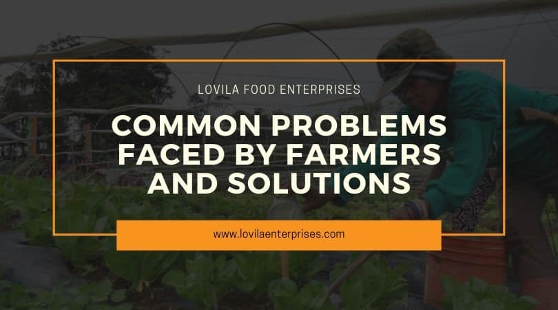 Common Problems Faced by Farmers and Potential Solutions
