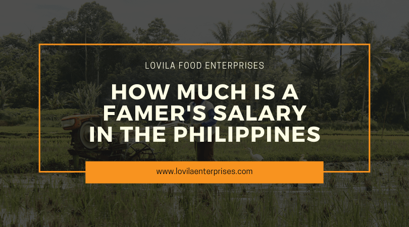 How Much is a Farmer's Salary in the Philippines